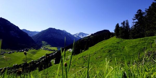 Steghäuser-Landschaft