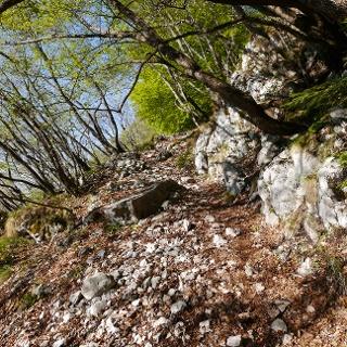 Schwieriger Trail bei der Abfahrt