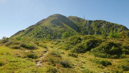 Der Gipfel ist zu sehen, der Steig führt später nach rechts