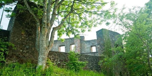 Außenansicht Burg Ulmen
