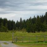 Weg zur Freiländerhütte
