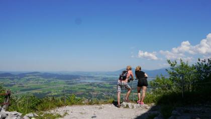 Ausblick von der Burgruine Falkenstein