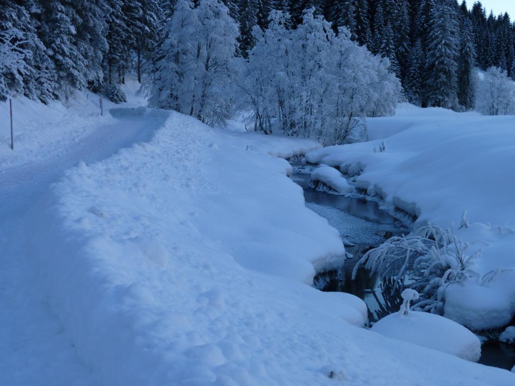 Vorbei an Bächen  - @ Autor: kUNO  - © Quelle: Tourismusverband Tannheimer Tal