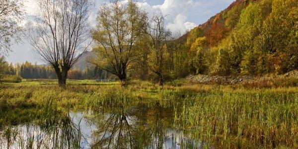 Erlesene Natur: Grundlose-Taubenborn bei Höxter