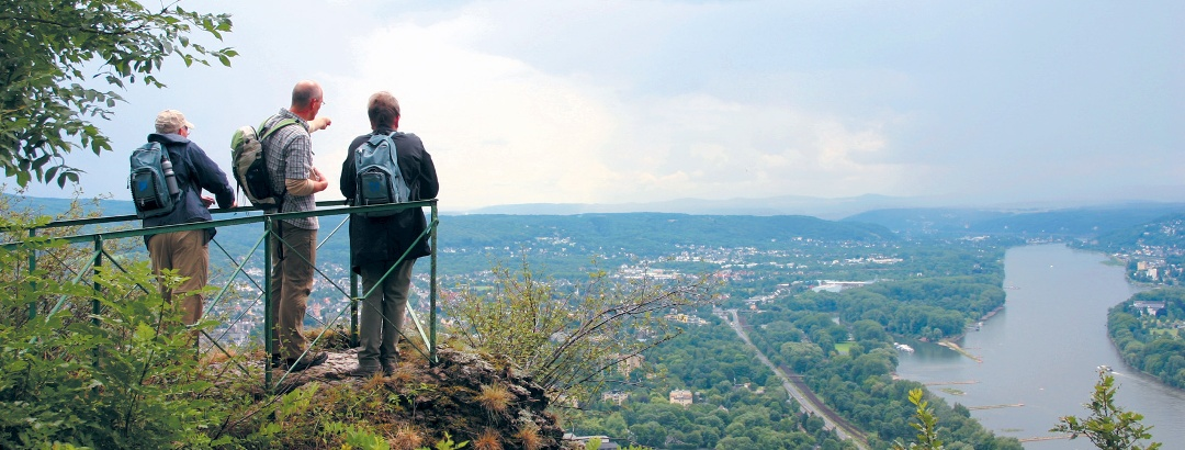 Aussicht Drachenfels