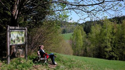 Am Riedbachtal