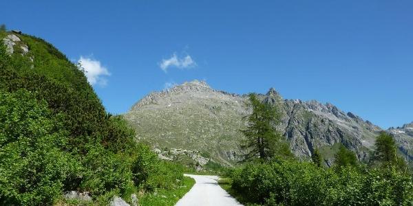 Giro Cornisello - Amola.