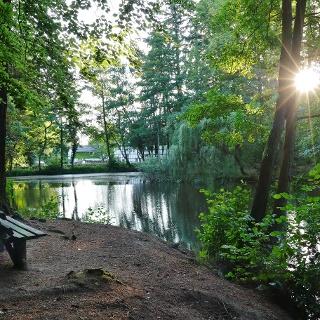 Forstweiher bei Rheinbach