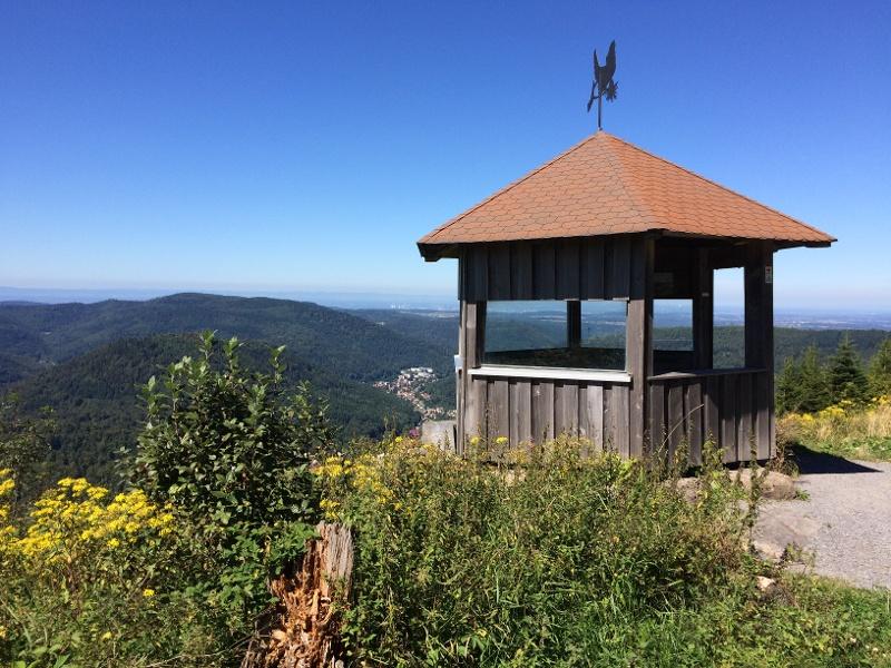 Höfen - Dobel - Schweizerkopf - Grünhütte