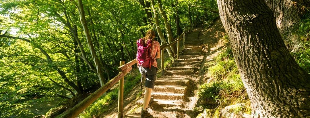 Treppe im Wurmtal