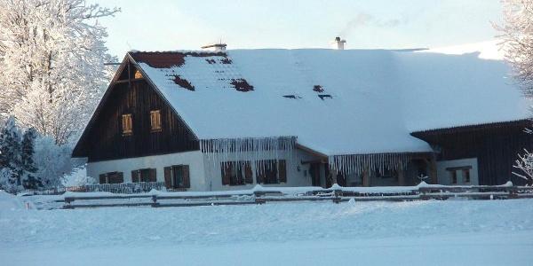 Waldhäuser