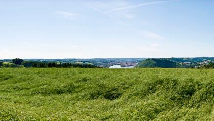 Freinberg
