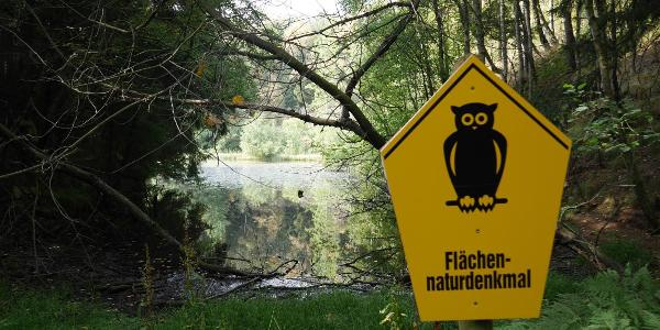 der Waldsee