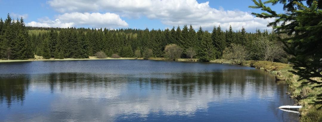 Der Schwarze Teich