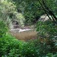 Der Brunnenpfad bietet Erholung in der Natur.
