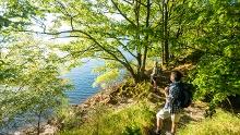 Wildnis-Trail (Gesamt)