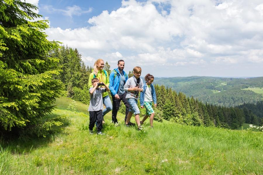 Schonach - Genießerpfad U(h)rwaldpfad Rohrhardsberg