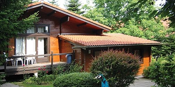 Blockhütte im Iutspann Hiddentrup