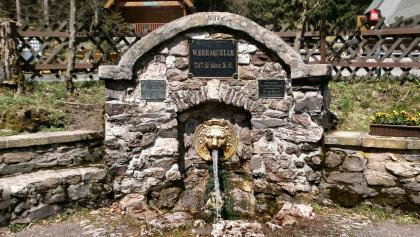 Werraquelle bei Fehrenbach
