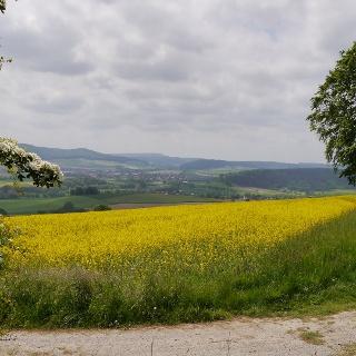 Landschaft in Groß Berkel