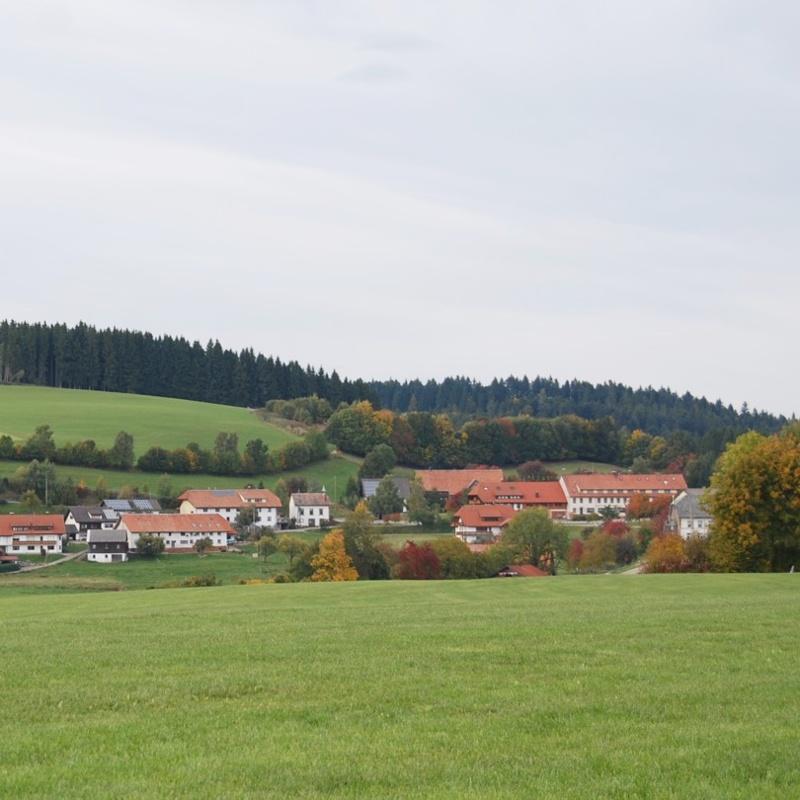 Dachsberg: Rundtour Wittenschwand 4