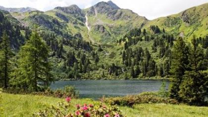 Scheiblsee