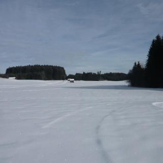 Zwischen Berlebergholz und Dornachmoos