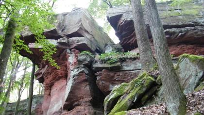 Leuchtend rote Felsformationen des Naturdenkmals Felsenmeer.