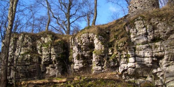 Letzte Mauerreste der Wildburg auf einem Quarzitfelsen