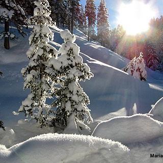 Mariazeller Land im Winter