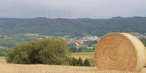 Ausblick vom Hang des Steinbergs auf Reichweiler
