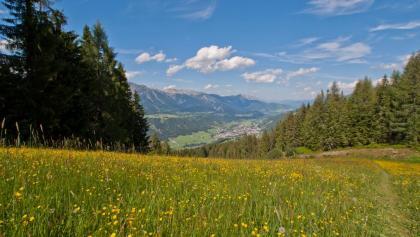 Blick vom Wanderweg Nr. 60 nach Schladming