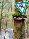 2.Versuch..!?   - © Quelle: Hohenlohe + Schwäbisch Hall Tourismus e.V.