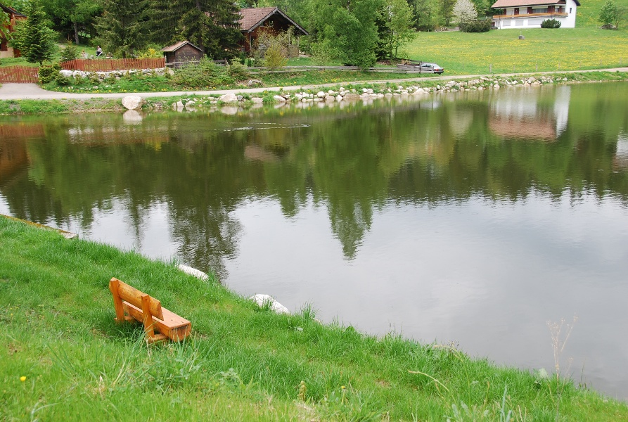 Dachsberg: Rundtour Happingen 2