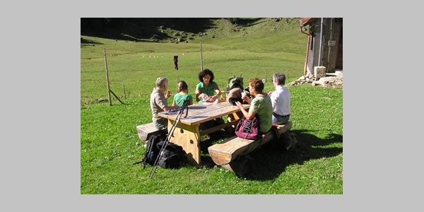 Seelen Alpe - Allgäuer Picknickplätze