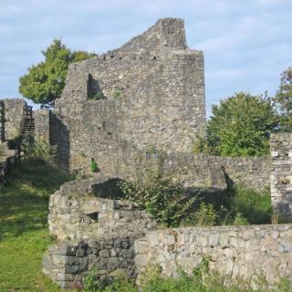 Die Ruine Löwenburg