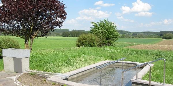 Wassertretanlage in Schlingen