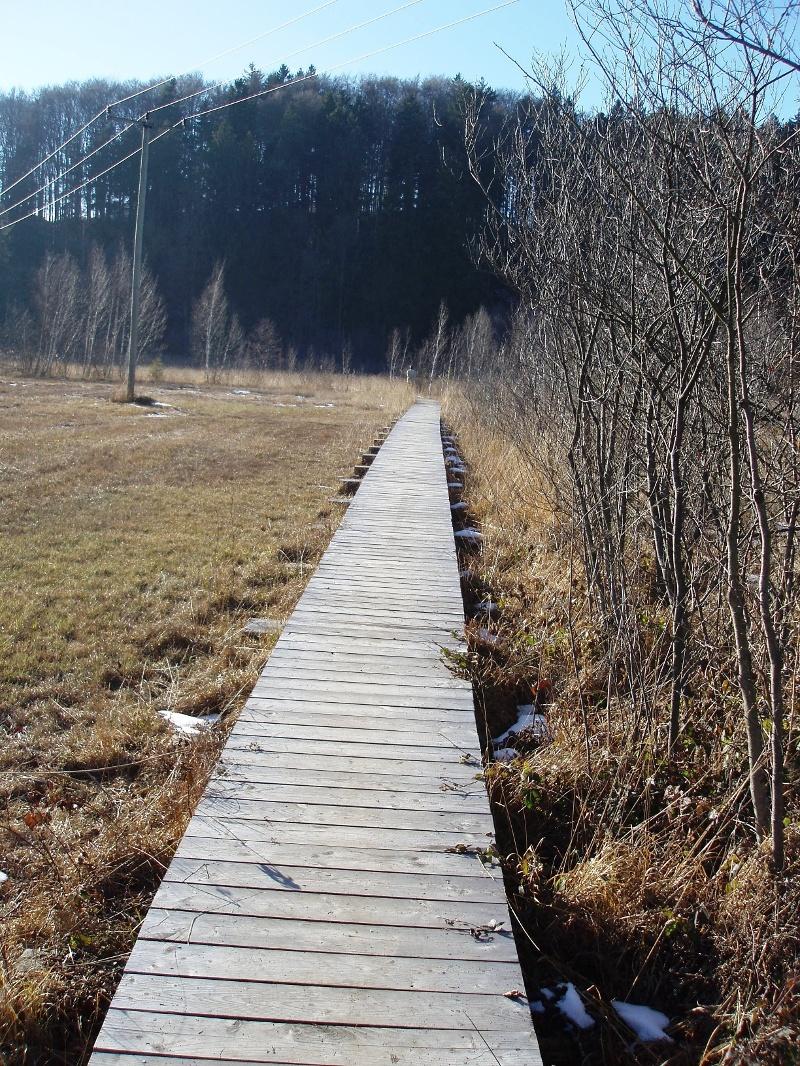 Bärnsee-Runde Nordic Walking