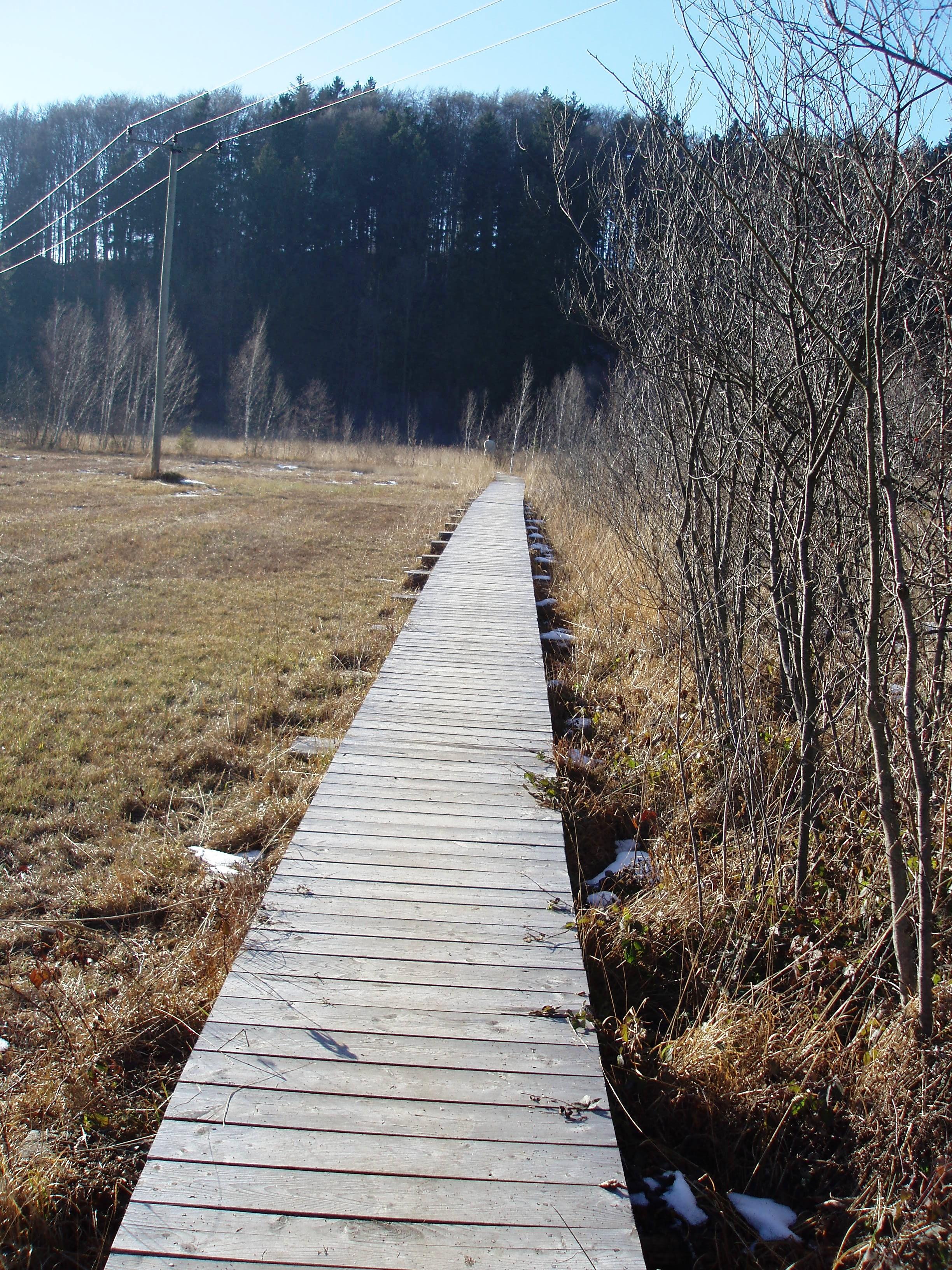 Holzsteg am Bärnsee