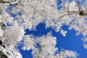 Foto Winterhimmel