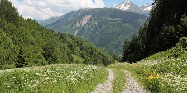 Ein Blick zurück im Val Acletta