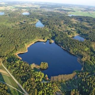 Hoheneicher Wald und teiche
