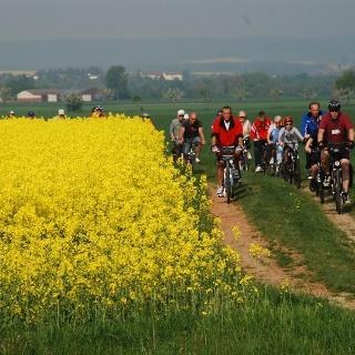 Rad- und Naturerlebnistouren am Grünen Band im nördlichen Harzvorland