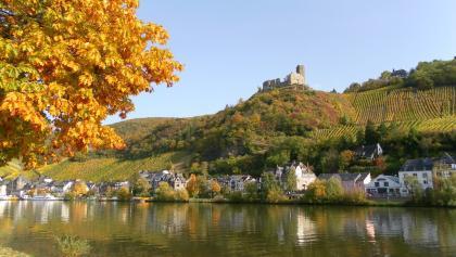 Burgruine Landshut - hoch über der Mosel