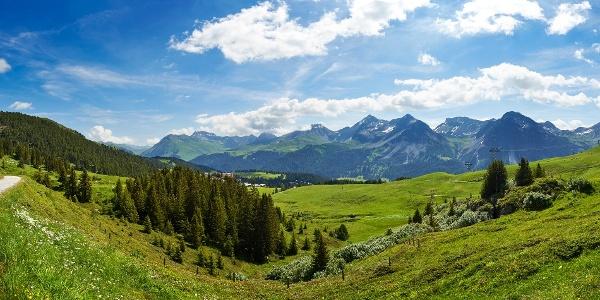 Arlenwaldweg