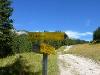 Am Weg zum Adlerhorst  - @ Autor: kUNO  - © Quelle: Tourismusverband Tannheimer Tal