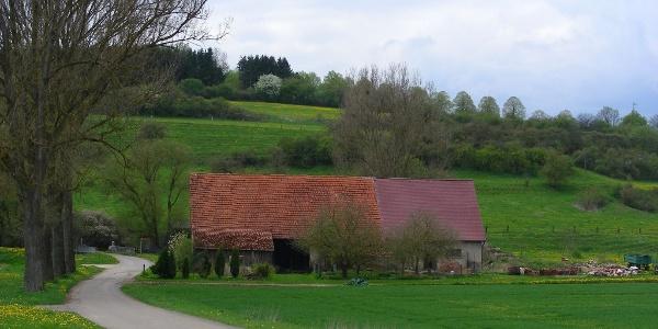 Die Gallusmühle.