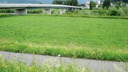 Rheinbrücke Koblach-Montlingen