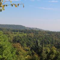 Dachswald Blick nach Stuttgart im Dunst