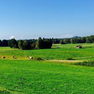 Bei Königsdorf